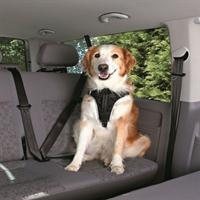 """Imagem de Peitoral Segurança """"Dog Protect"""""""