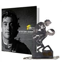 Imagem de Livro Ayrton Senna, Um Herói de Alma, Coração e Aço!